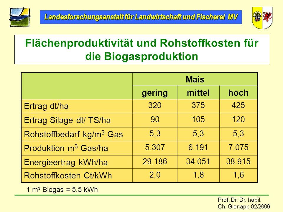 Flächenproduktivität und Rohstoffkosten für die Biogasproduktion