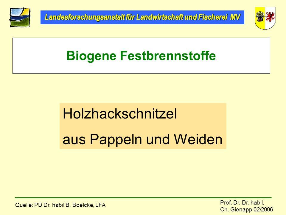 Biogene Festbrennstoffe