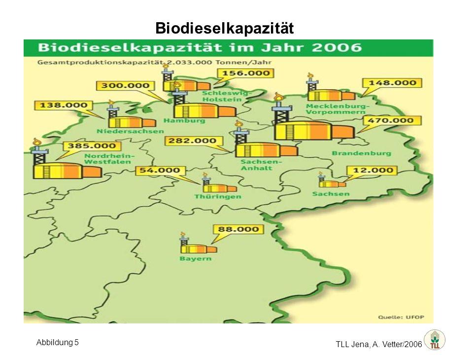 Biodieselkapazität TLL Jena, A. Vetter/2006 Abbildung 5