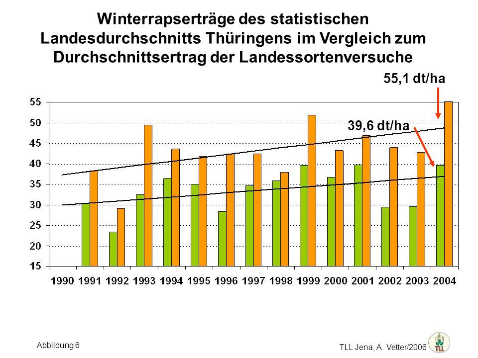 Winterrapserträge des statistischen Landesdurchschnitts Thüringens im Vergleich zum Durchschnittsertrag der Landessortenversuche