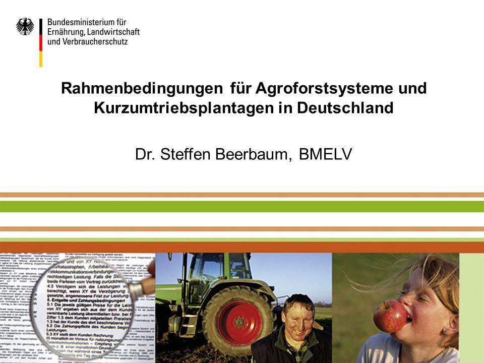 Dr. Steffen Beerbaum, BMELV