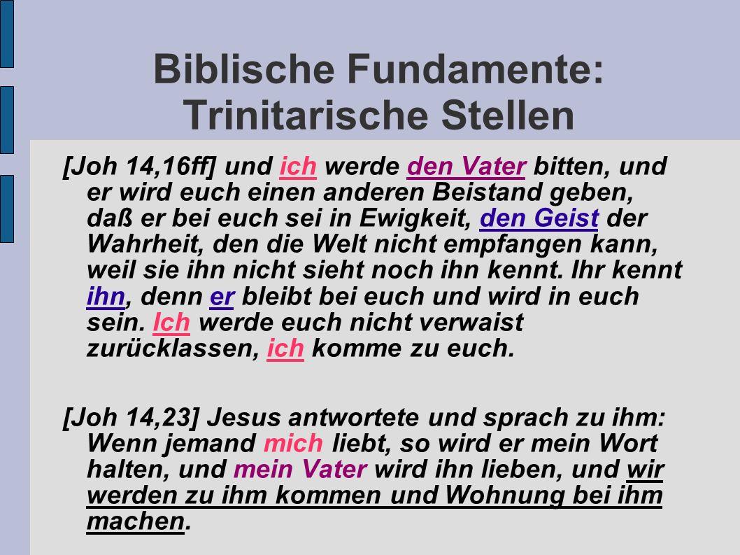 Biblische Fundamente: Trinitarische Stellen