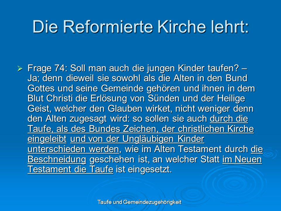 Die Reformierte Kirche lehrt: