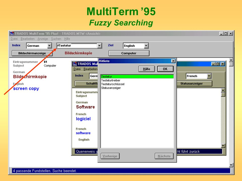 MultiTerm '95 Fuzzy Searching