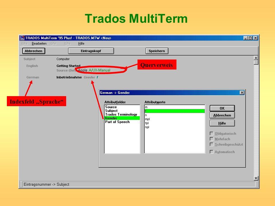 """Trados MultiTerm Querverweis Indexfeld """"Sprache"""