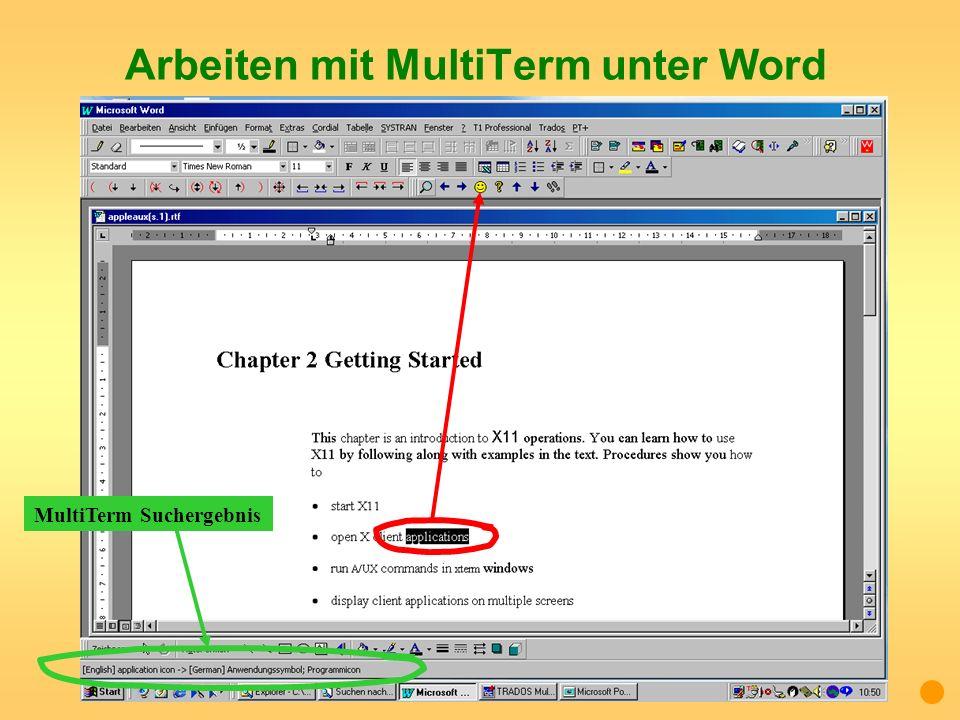 Arbeiten mit MultiTerm unter Word