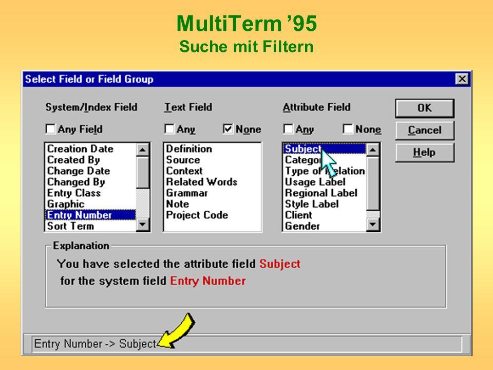 MultiTerm '95 Suche mit Filtern