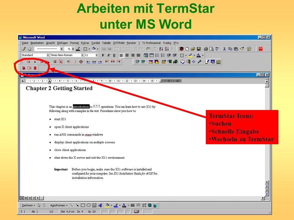 Arbeiten mit TermStar unter MS Word
