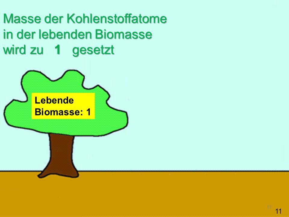 Masse der Kohlenstoffatome in der lebenden Biomasse wird zu 1 gesetzt