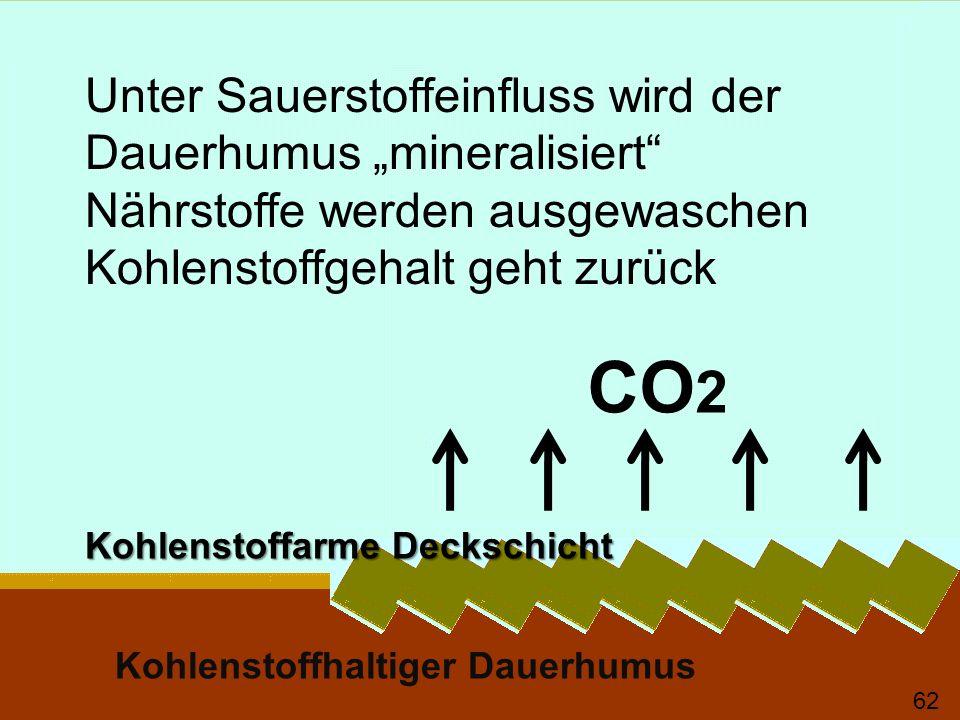 """CO2 Unter Sauerstoffeinfluss wird der Dauerhumus """"mineralisiert"""