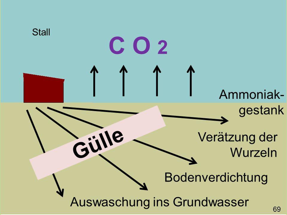 C O 2 Gülle Ammoniak-gestank Verätzung der Wurzeln Bodenverdichtung