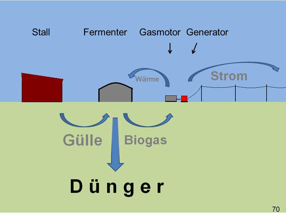 Stall Fermenter Gasmotor Generator 70