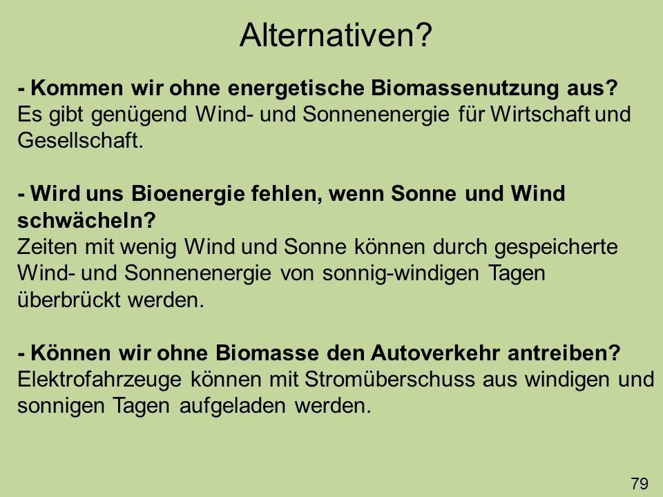 Alternativen - Kommen wir ohne energetische Biomassenutzung aus
