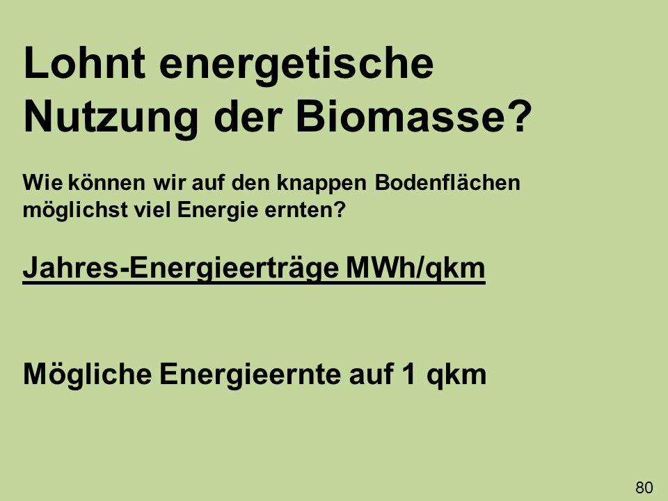 Lohnt energetische Nutzung der Biomasse