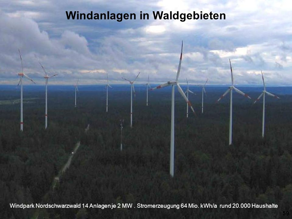 Windanlagen in Waldgebieten