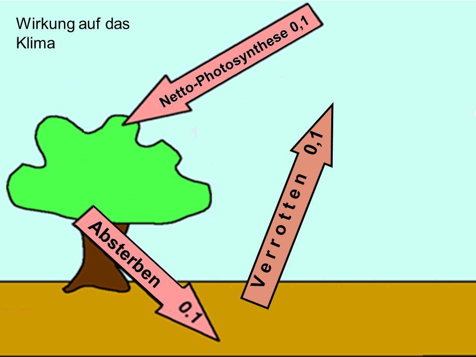 Wirkung auf das Klima V e r r o t t e n 0,1
