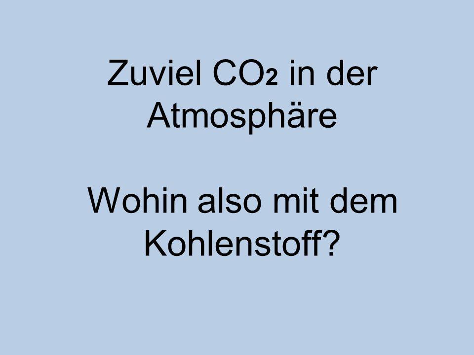 Zuviel CO2 in der Atmosphäre