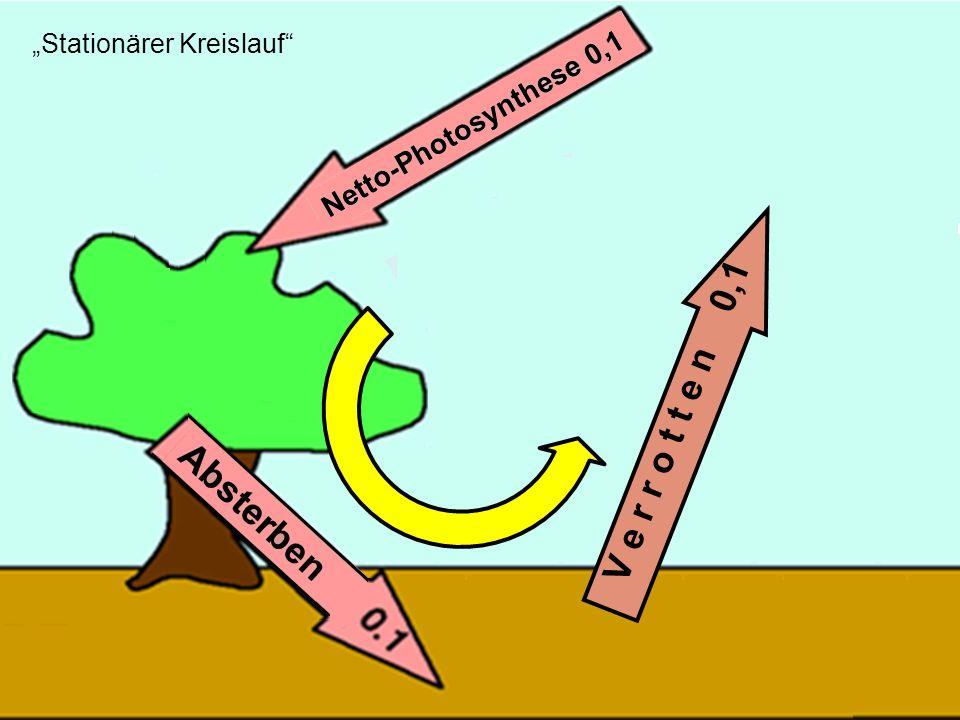 """Stationärer Kreislauf"