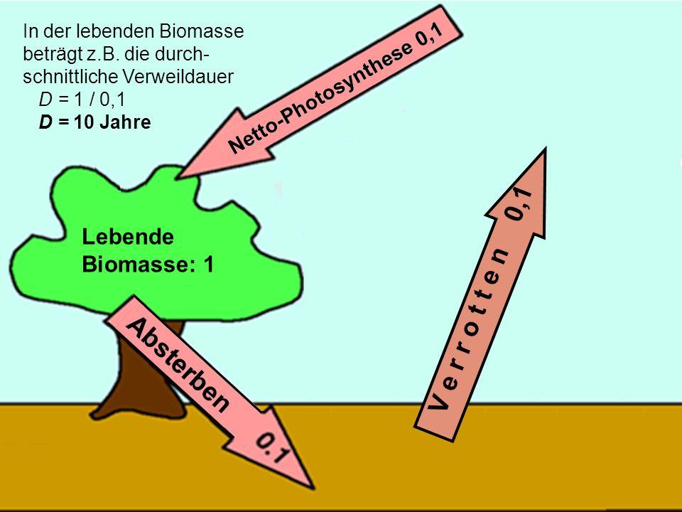 V e r r o t t e n 0,1 Lebende Biomasse: 1