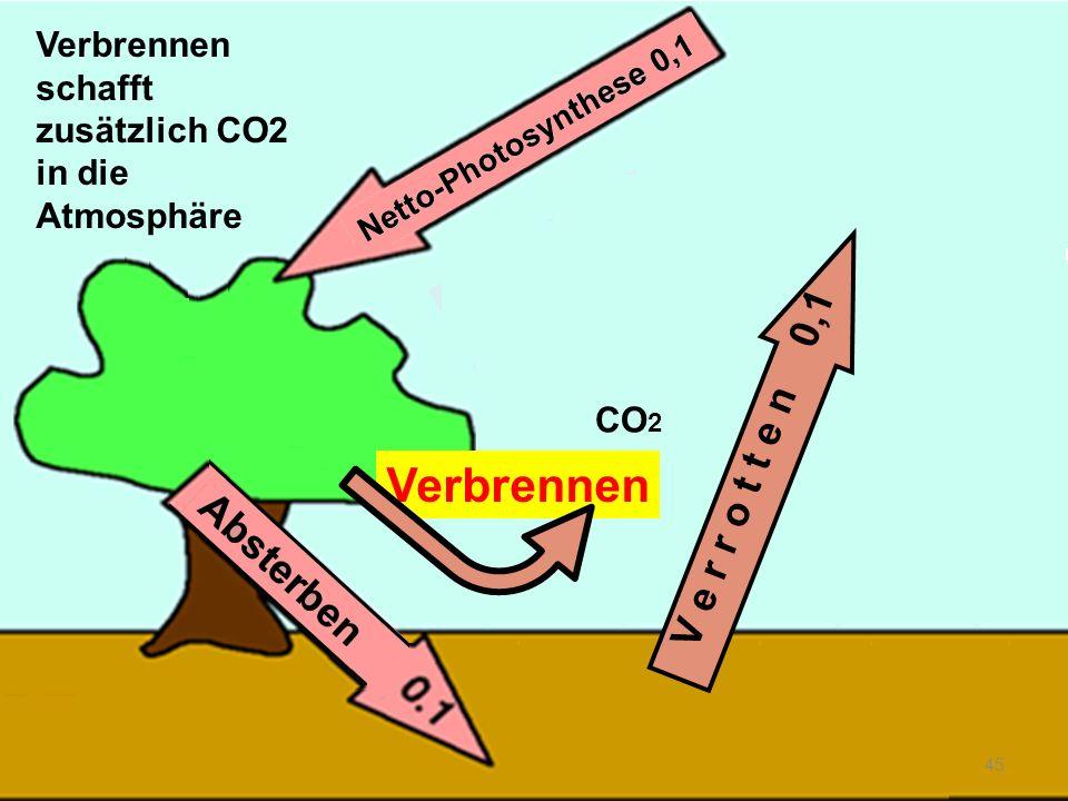 Verbrennen schafft zusätzlich CO2 in die Atmosphäre