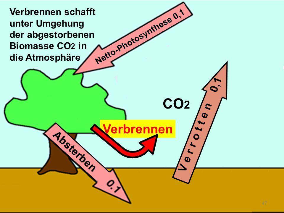 CO2 Verbrennen V e r r o t t e n 0,1