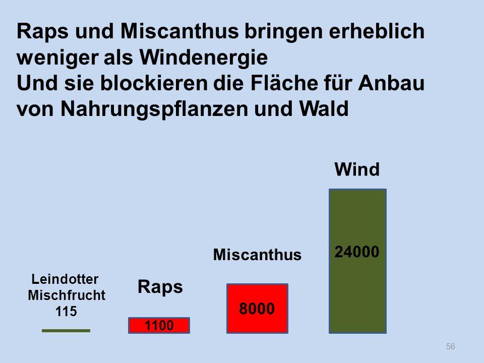 Raps und Miscanthus bringen erheblich weniger als Windenergie