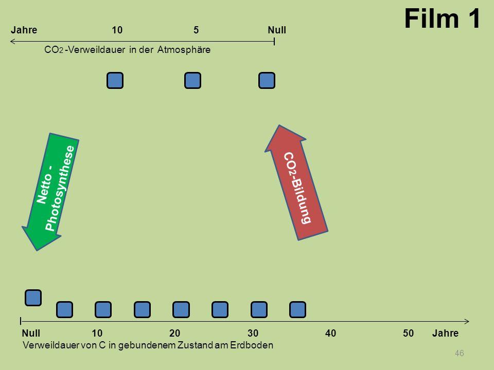 Film 1 CO2-Bildung Netto -Photosynthese Jahre 10 5 Null