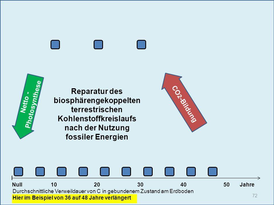 Reparatur des biosphärengekoppelten terrestrischen Kohlenstoffkreislaufs nach der Nutzung fossiler Energien
