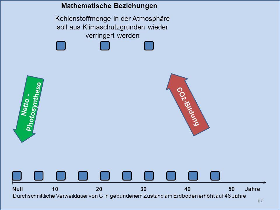 CO2-Bildung Netto -Photosynthese