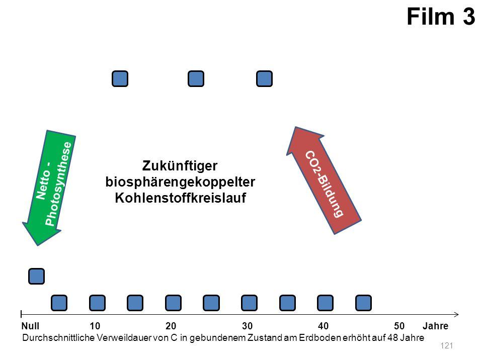 biosphärengekoppelter Kohlenstoffkreislauf