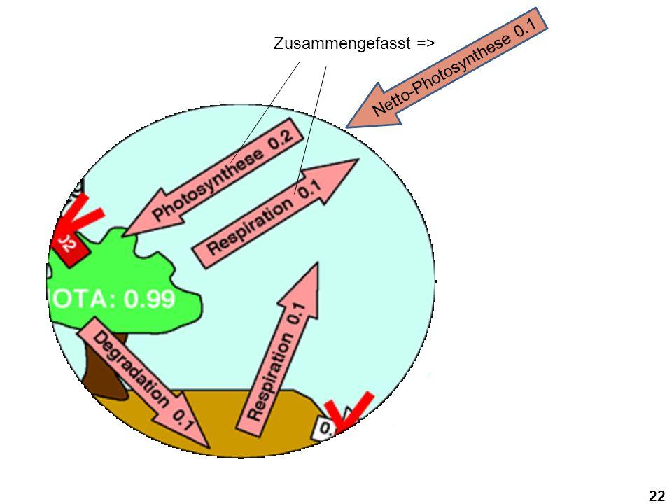 Zusammengefasst => Netto-Photosynthese 0.1