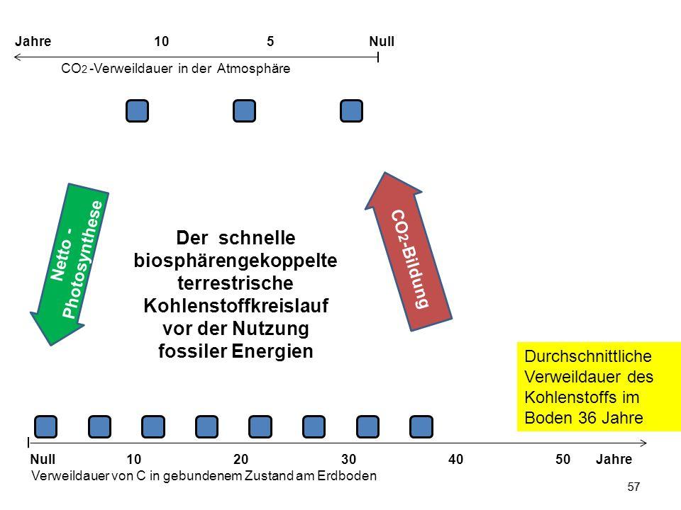 Jahre 10. 5. Null. CO2 -Verweildauer in der Atmosphäre.