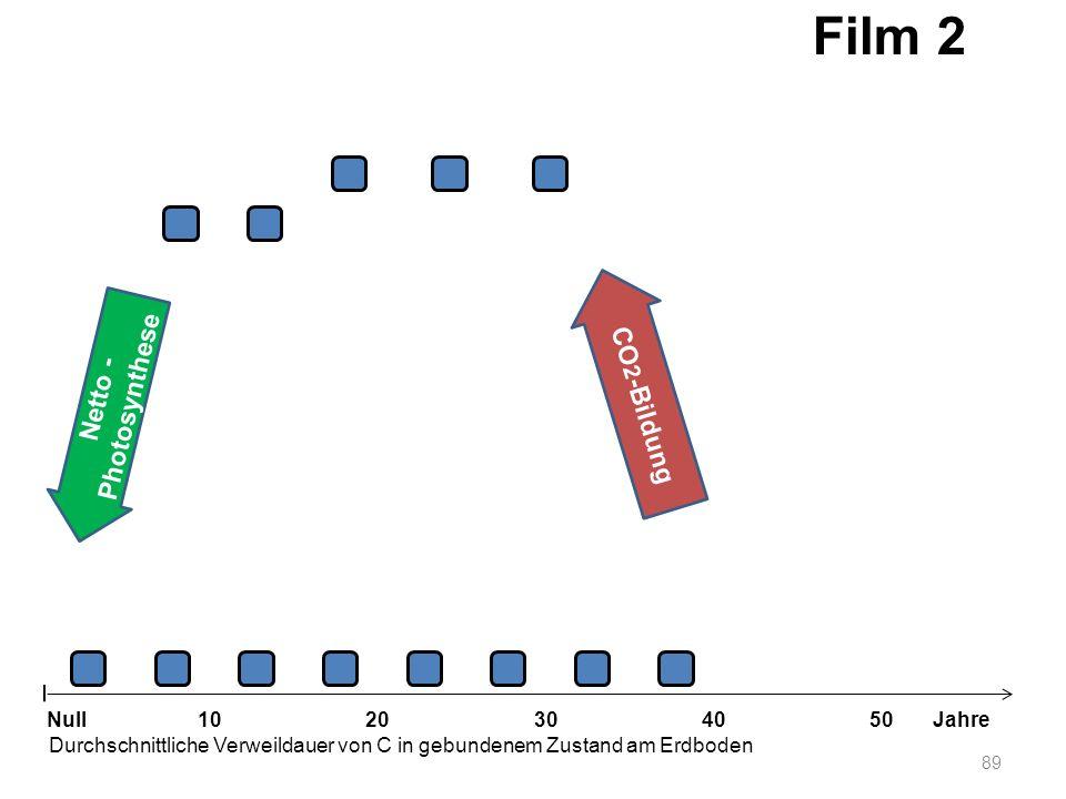 Film 2 CO2-Bildung Netto -Photosynthese Null 10 20 30 40 50 Jahre