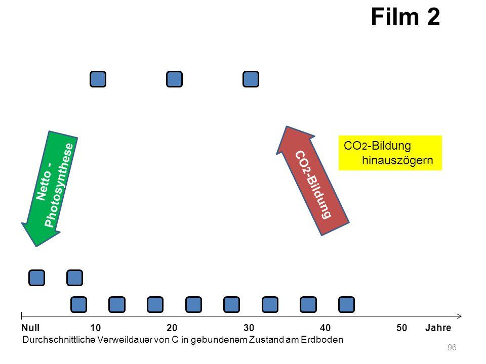 Film 2 CO2-Bildung hinauszögern CO2-Bildung Netto -Photosynthese Null