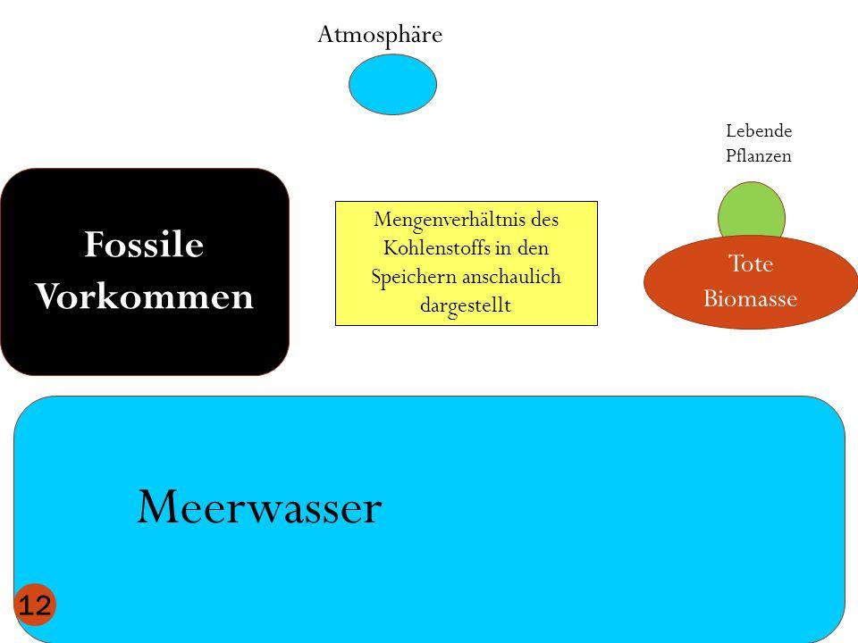 Meerwasser Fossile Vorkommen Atmosphäre Tote Biomasse