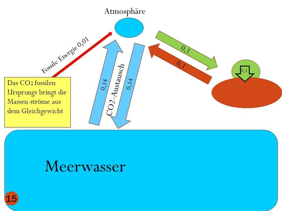 Meerwasser Atmosphäre CO2-Austausch Fossile Energie 0,01 0,1 0,1
