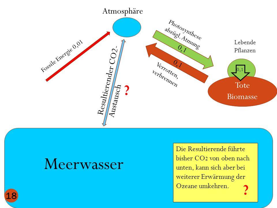 Meerwasser Atmosphäre Resultierender CO2-Austausch Tote Biomasse
