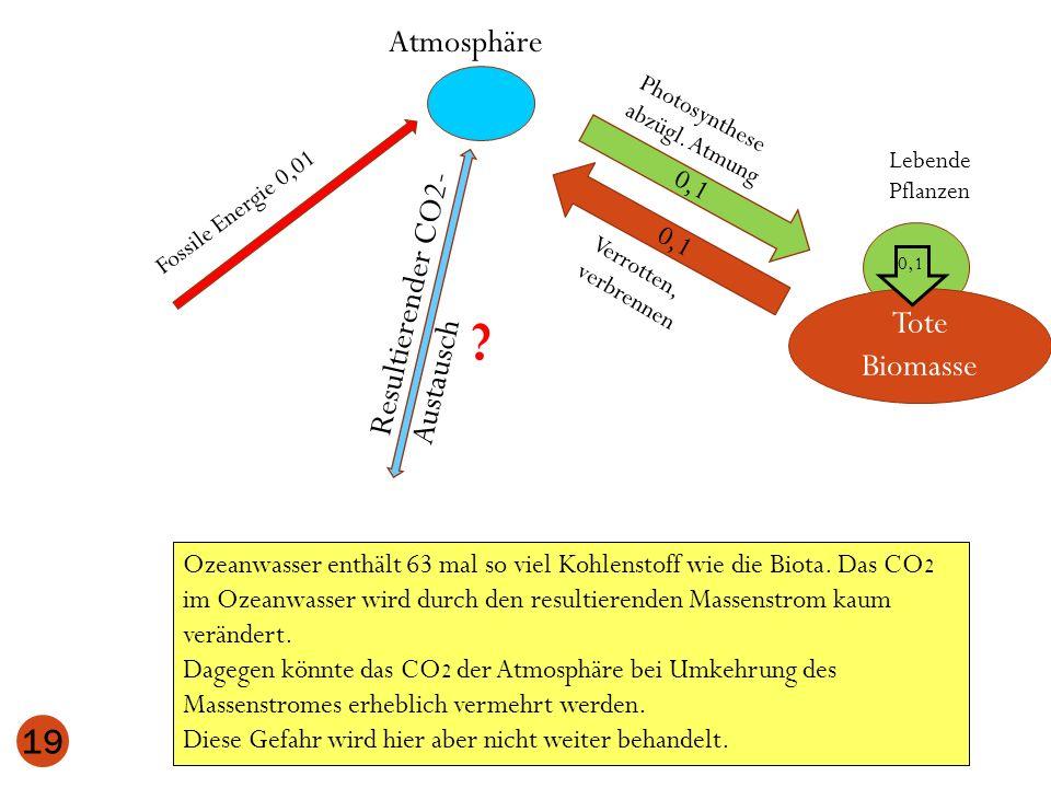 Atmosphäre Resultierender CO2-Austausch Tote Biomasse 0,1 0,1