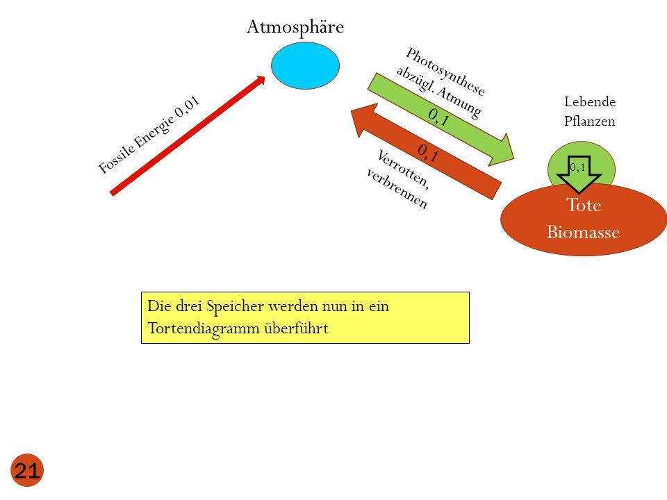 Atmosphäre Tote Biomasse 0,1 0,1
