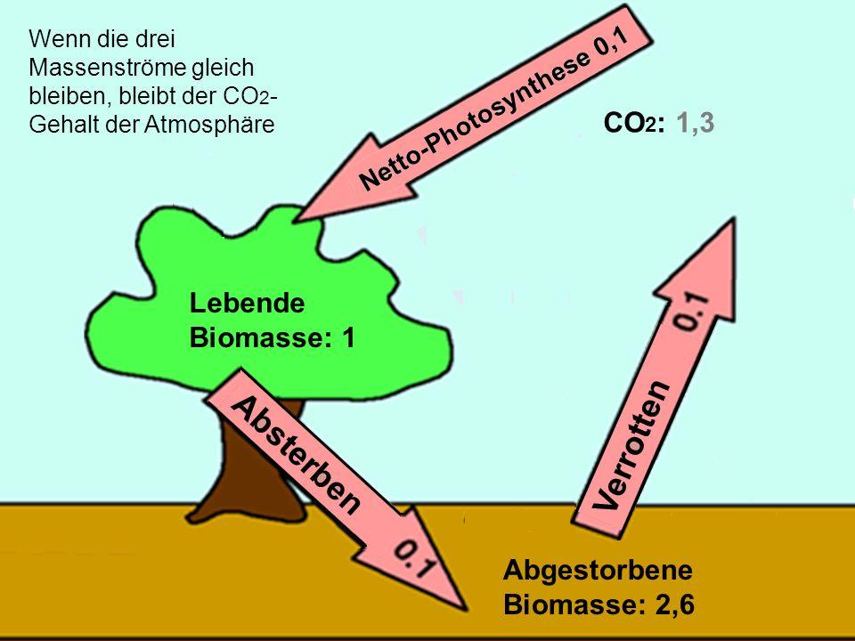Abgestorbene Biomasse: 2,6