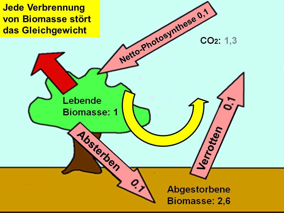 Jede Verbrennung von Biomasse stört das Gleichgewicht