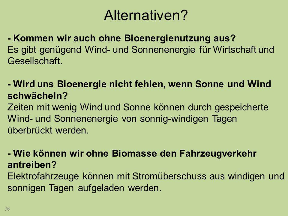 Alternativen - Kommen wir auch ohne Bioenergienutzung aus