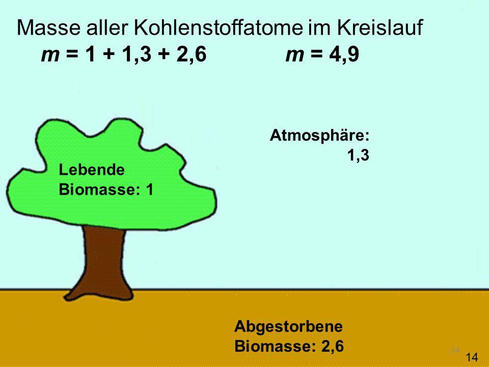 Masse aller Kohlenstoffatome im Kreislauf m = 1 + 1,3 + 2,6 m = 4,9