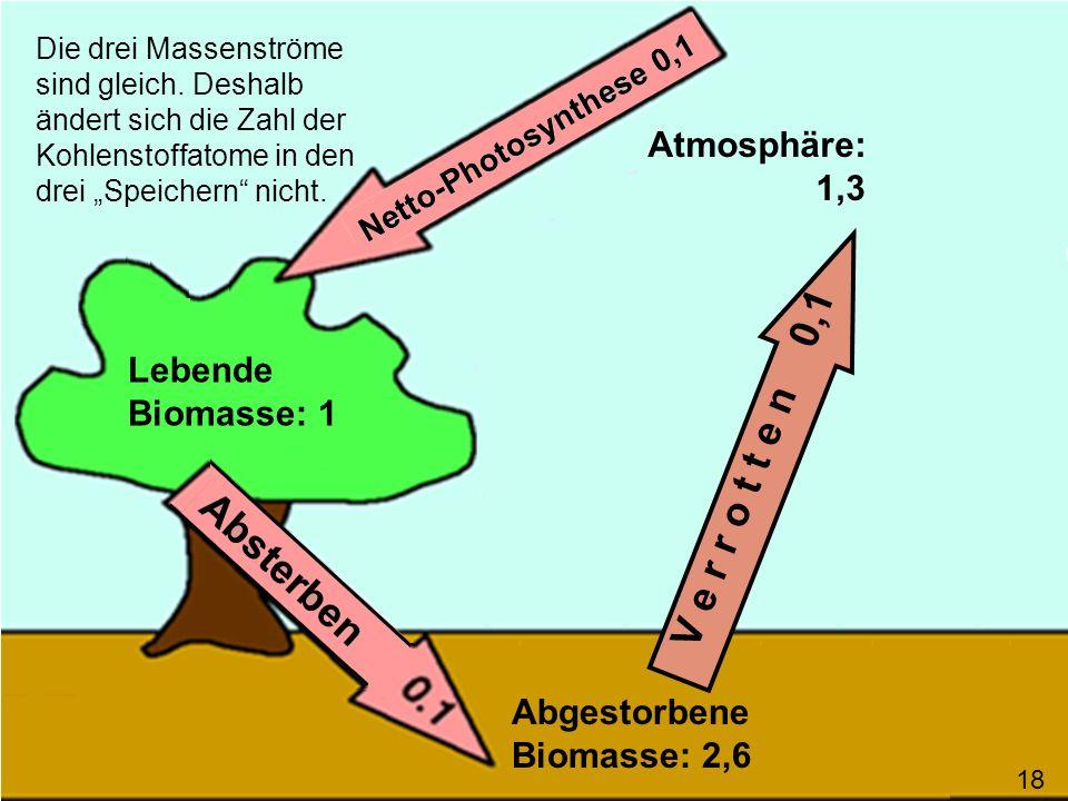 V e r r o t t e n 0,1 Atmosphäre: 1,3 Lebende Biomasse: 1