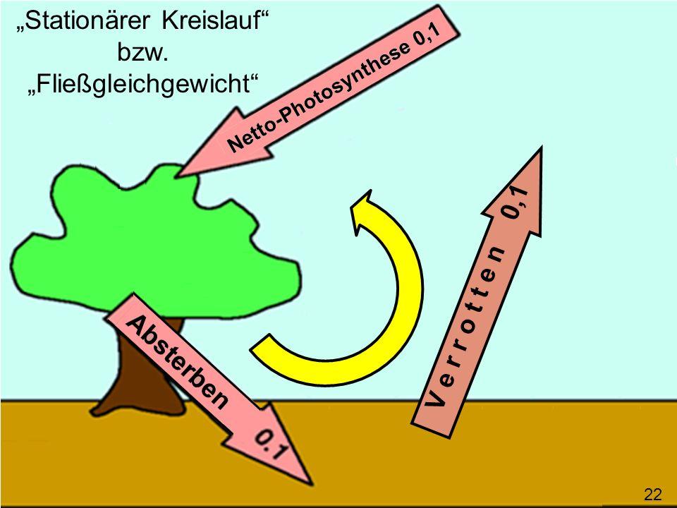 """""""Stationärer Kreislauf bzw. """"Fließgleichgewicht"""