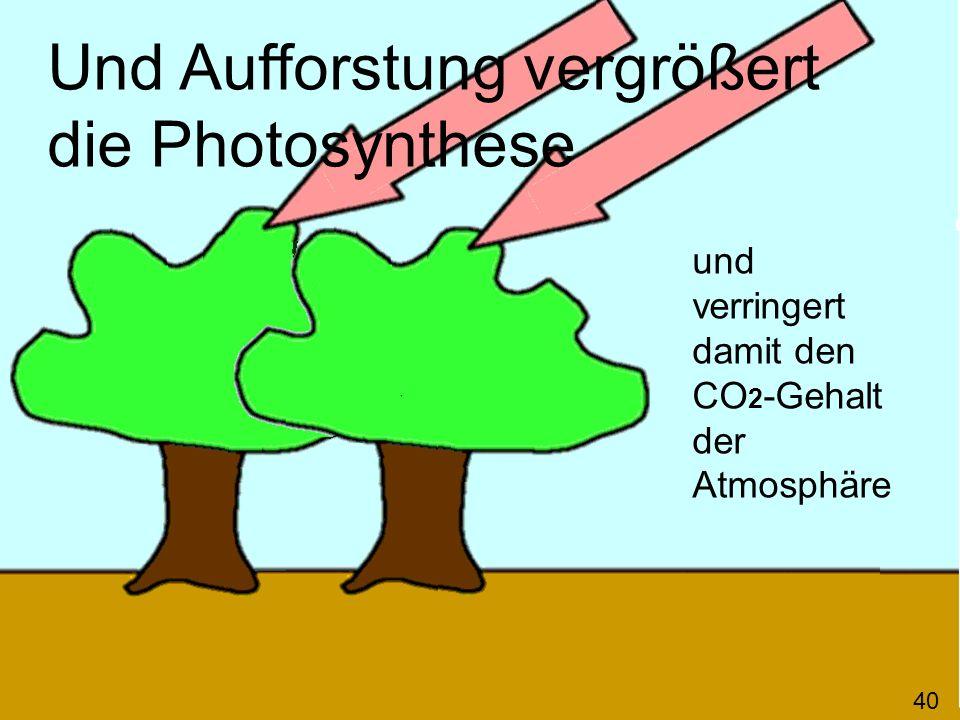 Und Aufforstung vergrößert die Photosynthese