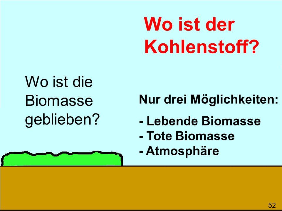 Wo ist der Kohlenstoff Wo ist die Biomasse geblieben