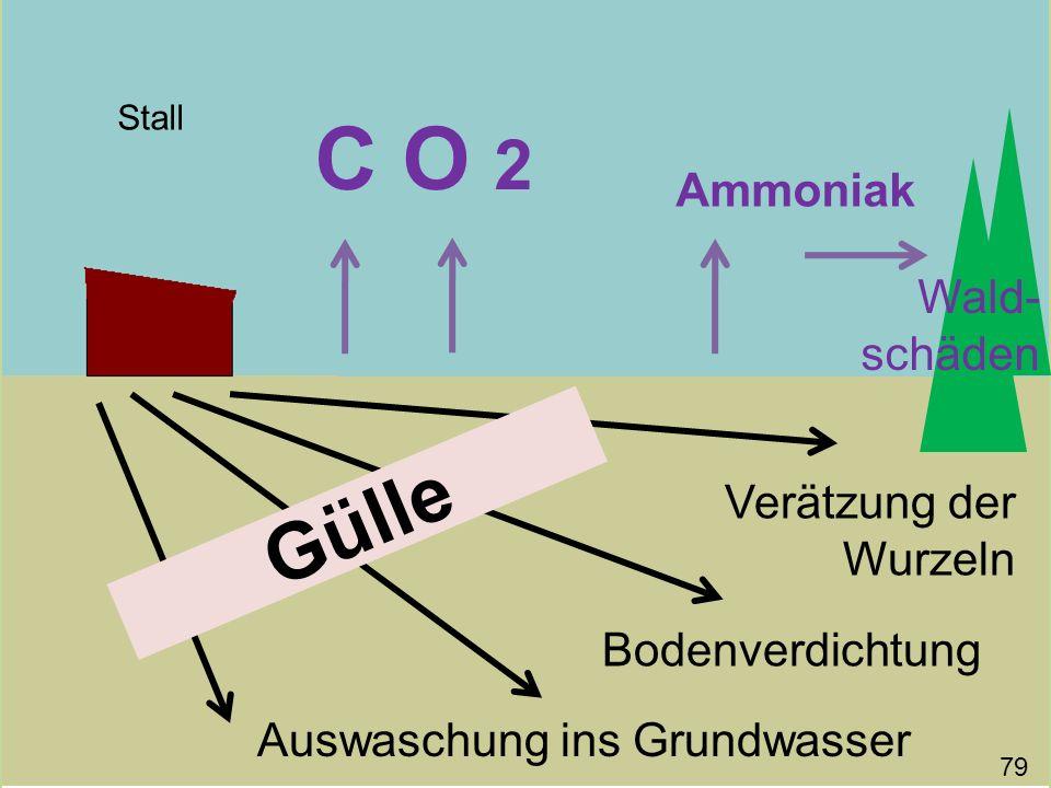 C O 2 Gülle Ammoniak Wald-schäden Verätzung der Wurzeln