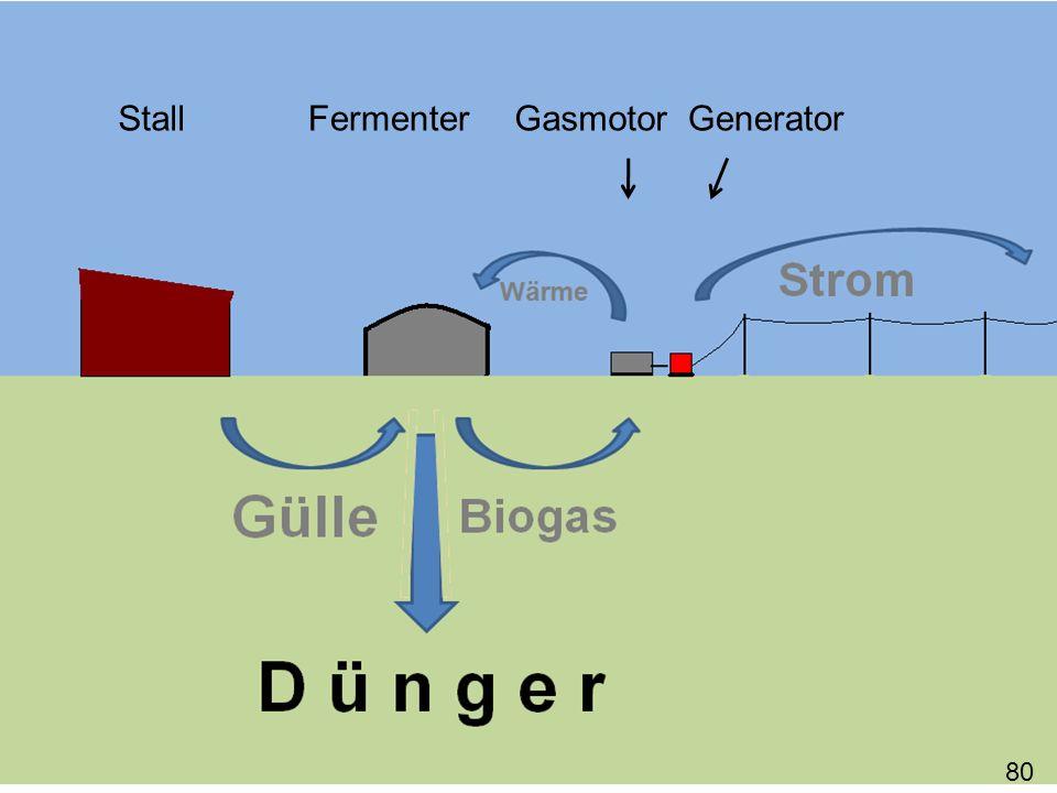 Stall Fermenter Gasmotor Generator