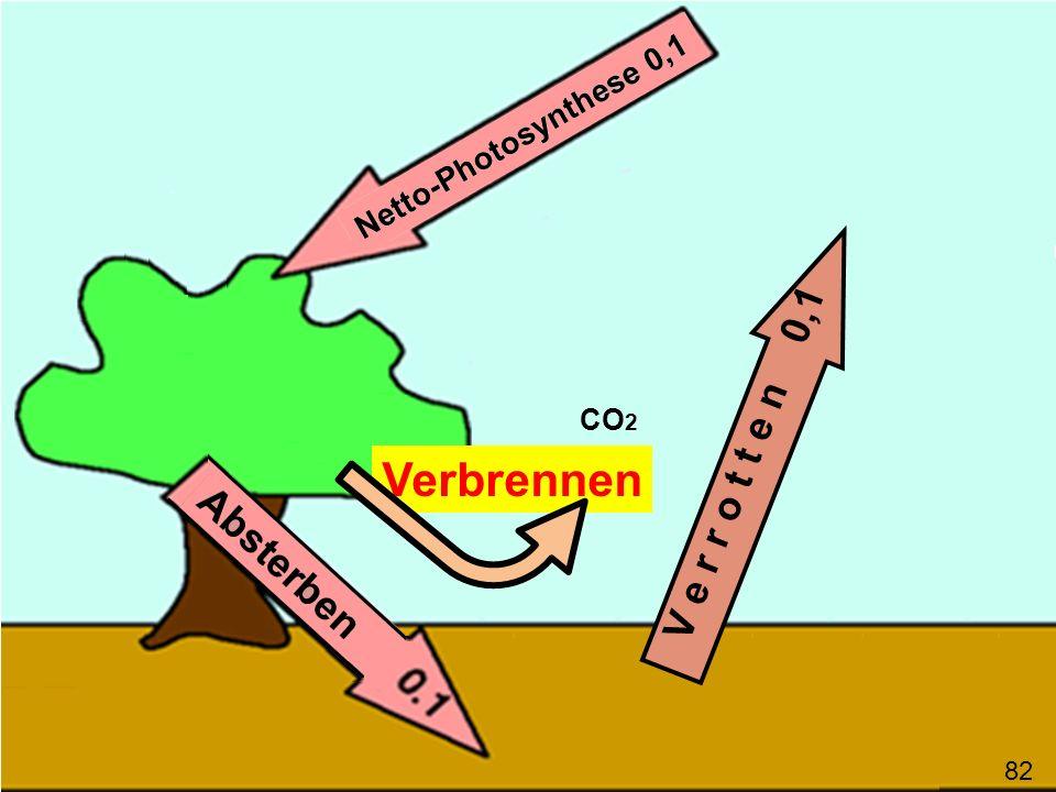 V e r r o t t e n 0,1 CO2 Verbrennen 82